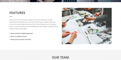 Onetone  - Free Clean & Professional WordPress Corporate Theme