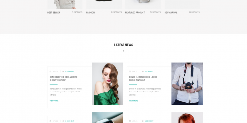 Rich Store Lite - Free Professional & Responsive WooCommerce Themes