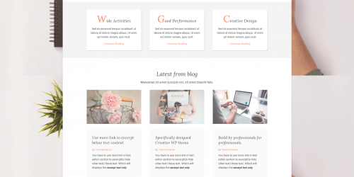 Excellent - Free Personal & Multipurpose Wordpress Theme