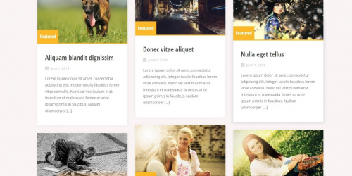 Alizee - Free Grid WordPress Blog Theme