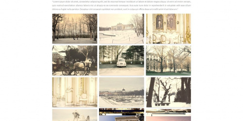 Viena - Free Simple Tumblr Gallery Theme
