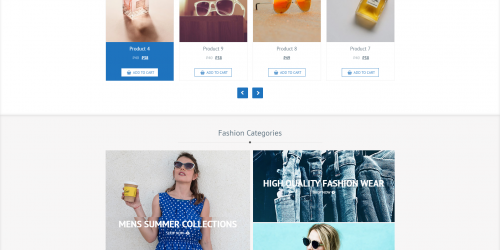 CFashionStore Lite - Free Simple & Multipurpose WooCommerce Theme