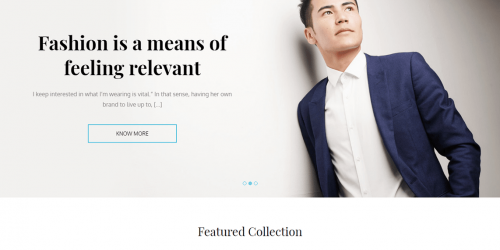 Store Mall - Free Simple & Clean WooCommerce Theme