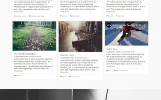 Pinnacle - Free Elegant Grid WordPress Blog Theme