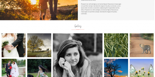 FotoGraphy - Free Beautiful & Clean WordPress Photography Theme