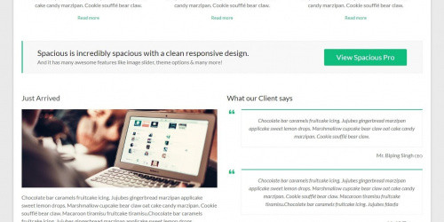 Spacious - Free Responsive WordPress Theme with Multiple Layouts