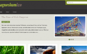 Magnesiumize - Gallery Blogger Template
