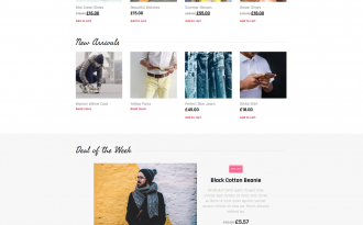 Fancy Lab - Free Beautiful & Responsive WooCommerce Theme