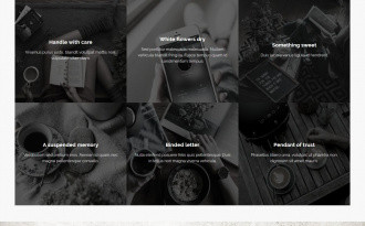 Anima - Free Modern WordPress Corporate Theme
