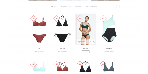 AP Bikini - Free Luxury & Minimal Shopify Theme