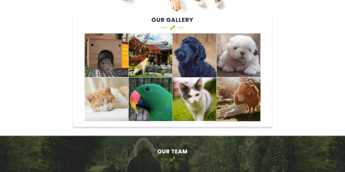 Pet Animal Store - Free Awesome & Colorful Pet WooCommerce Theme