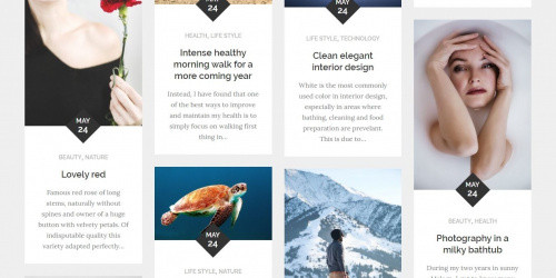 Reblog - Free Clean & Minimal WordPress Blogging Grid Theme